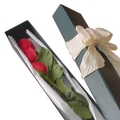 Rosas en caja x 3